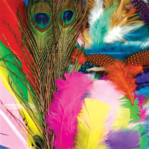 Feathers - Assorted - 125g Pack
