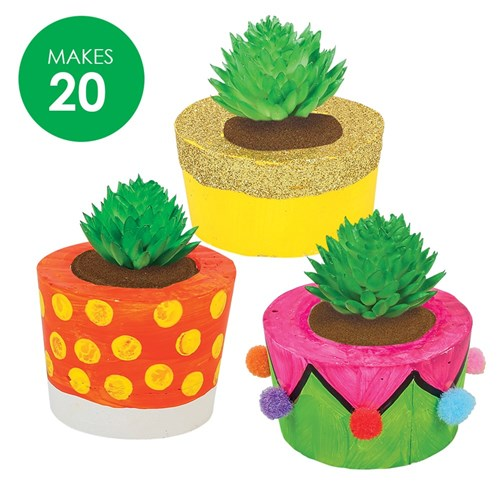 Potted Succulents Group Pack