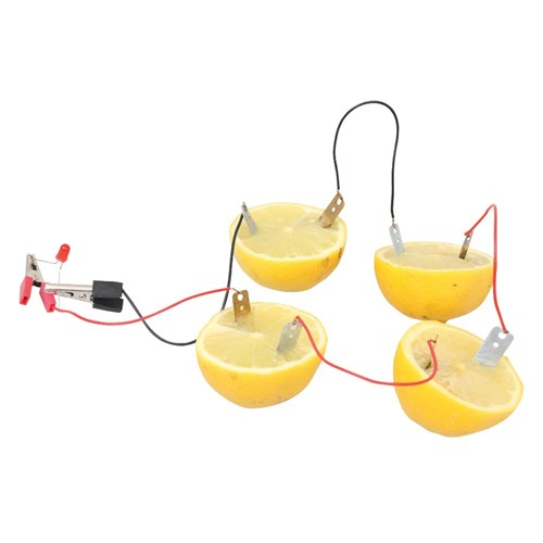 Fruit Battery Kit